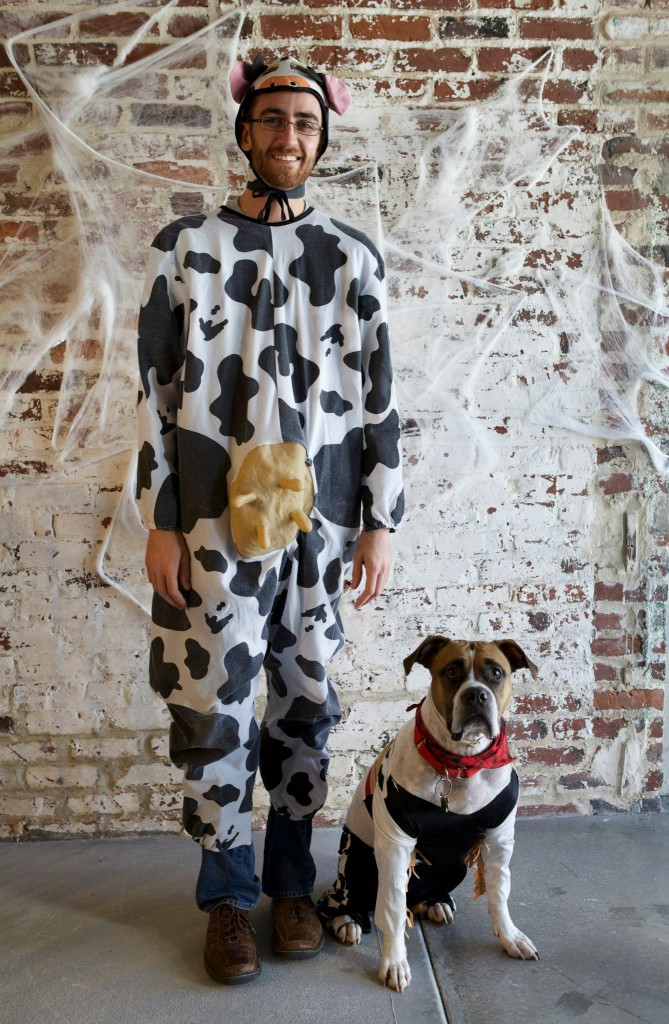 cowboy and cow